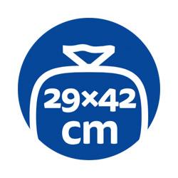 sacme-conserva-icone-29x42